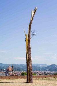 PENONE_737_2014-06_Albero_folgorato_Firenze_digArchivio_Penone